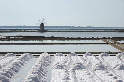 Saline di Trapani   raccolta del sale e1539121873427 - saline di trapani